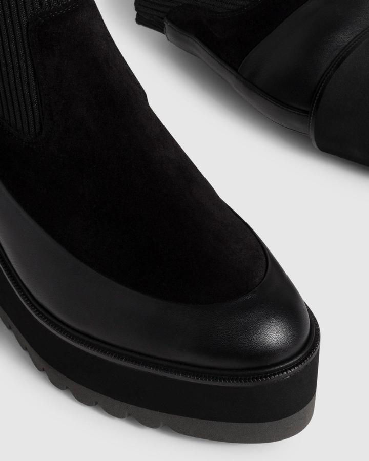 Castañer NOAH/069 Negro Botines en Loyna Shoes